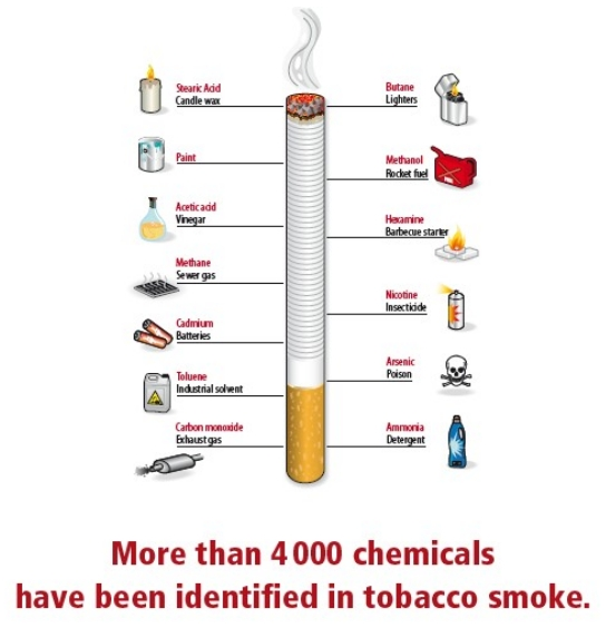 Smoking Facts: Facts about Smoking FACTS lides