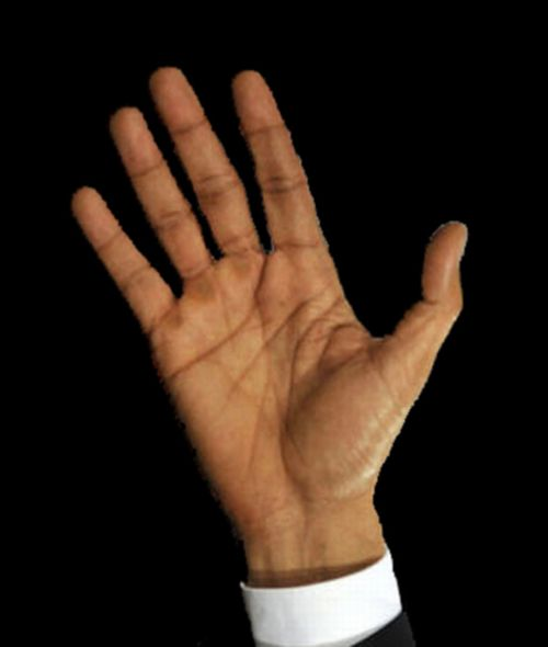 Obama's Palm's Hidden message or mere publicity message?